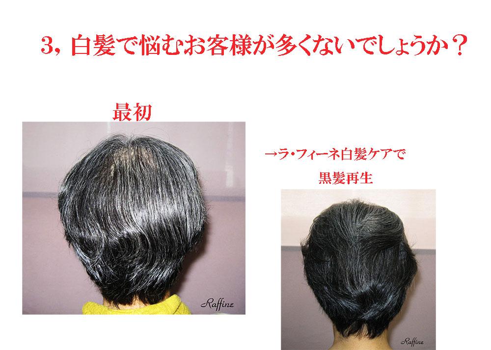薄毛白髪ケア方法